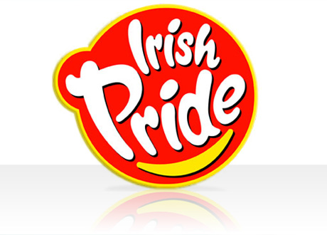 Fully Responsive Website launched for Irish Pride