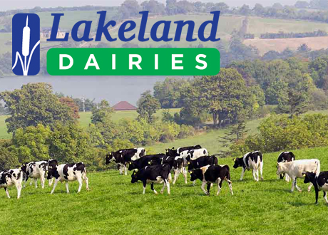 Responsive Website Developed for Lakeland Dairies